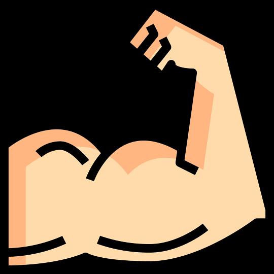 100뉴스,백뉴스,시니어,노인,실버,근테크,근력운동,노인근력,근육량,근감소증